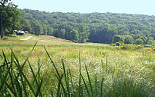 Ward Pound Ridge Reservation field